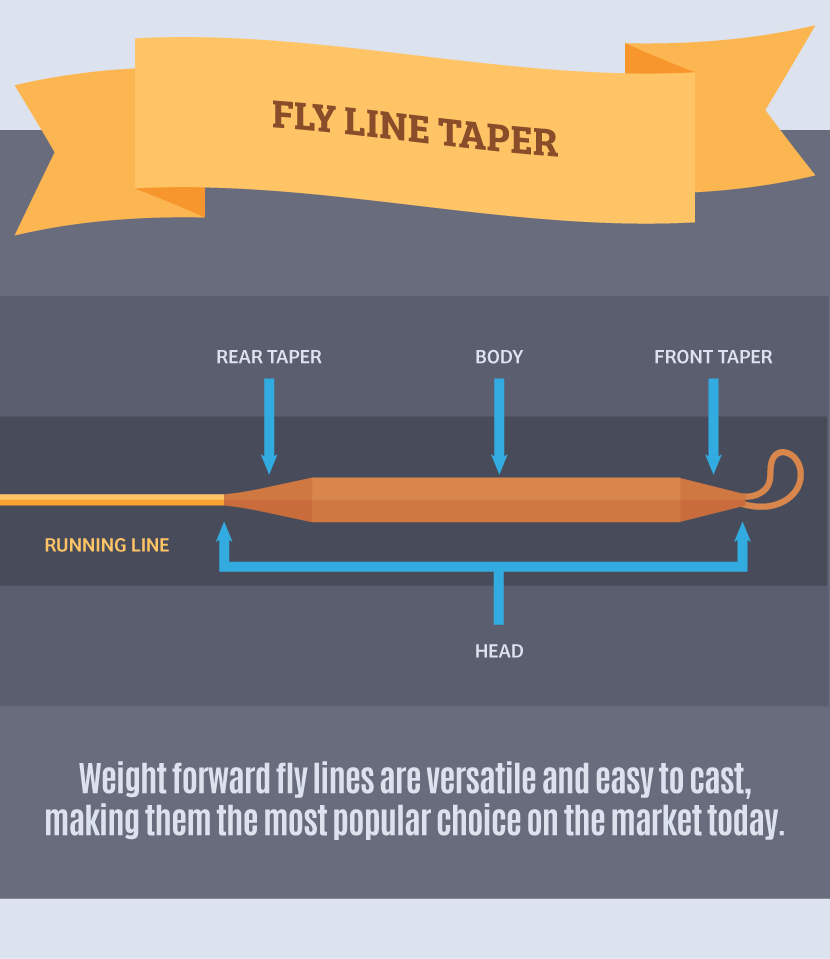 Fly Line Taper - Choosing the Right Fly Fishing Outfit